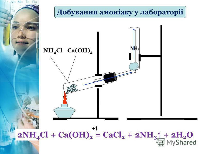 Добування амоніаку у лабораторії 2NH 4 Cl + Ca(OH) 2 = CaCl 2 + 2NH 3 + 2H 2 O +t NH 4 ClCa(OH) 2 NH 3