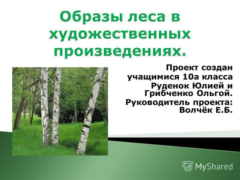Проект создан учащимися 10 а класса Руденок Юлией и Грибченко Ольгой. Руководитель проекта: Волчёк Е.Б.
