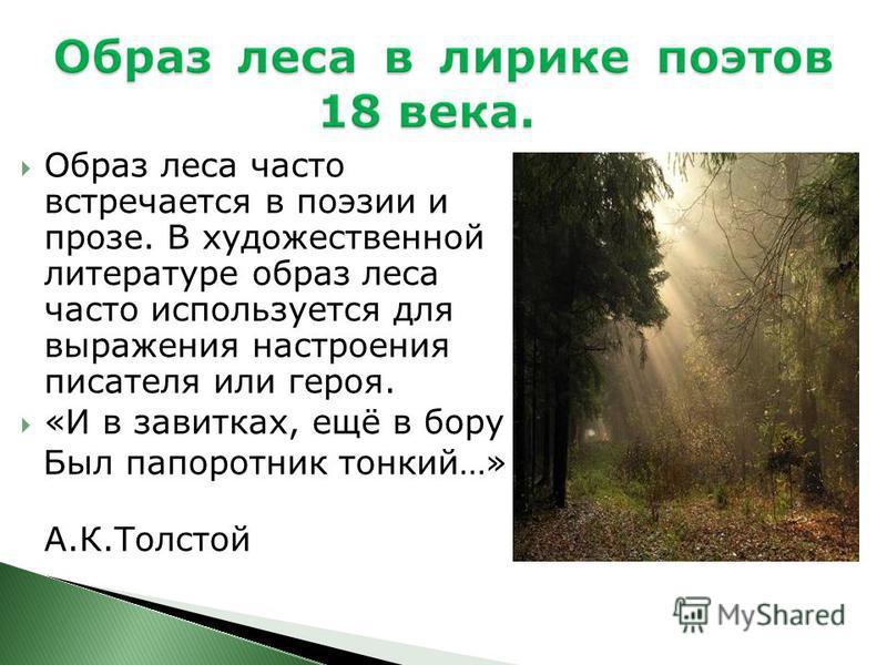 Образ леса часто встречается в поэзии и прозе. В художественной литературе образ леса часто используется для выражения настроения писателя или героя. «И в завитках, ещё в бору Был папоротник тонкий…» А.К.Толстой