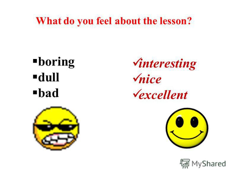 What do you feel about the lesson? boring dull bad interesting nice excellent