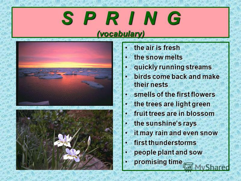 S P R I N G (vocabulary) the air is freshthe air is fresh the snow meltsthe snow melts quickly running streamsquickly running streams birds come back and make their nestsbirds come back and make their nests smells of the first flowerssmells of the fi