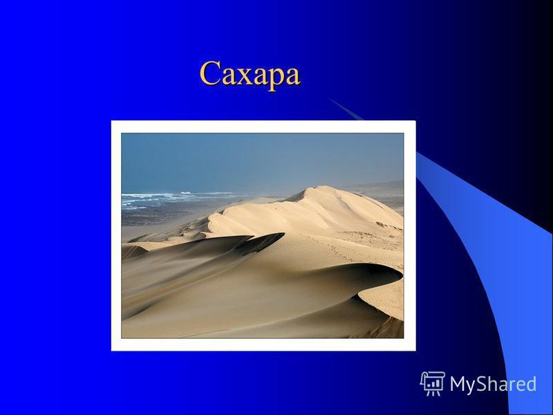 Сахара Сахара