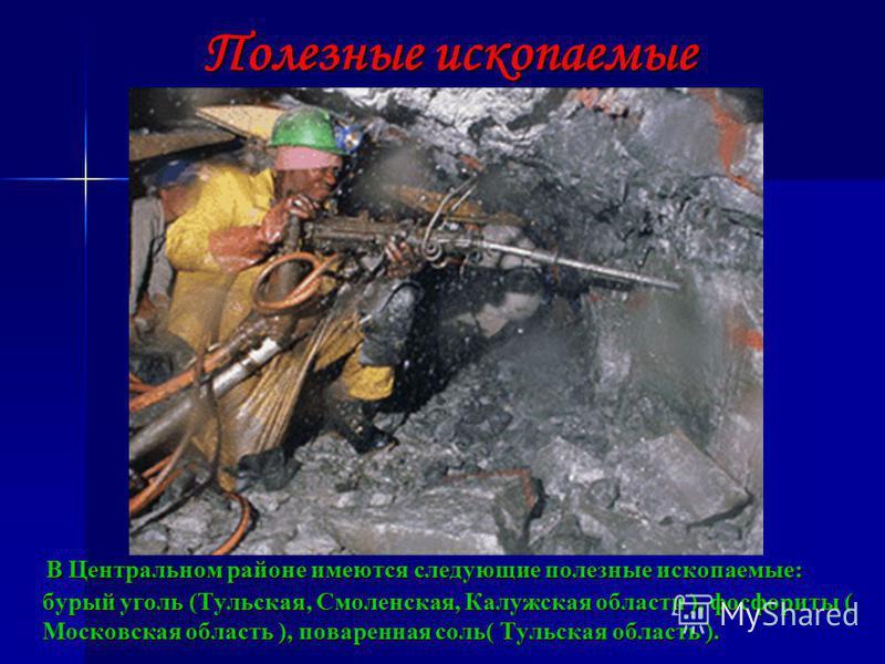 Полезные ископаемые В Центральном районе имеются следующие полезные ископаемые: бурый уголь (Тульская, Смоленская, Калужская области ), фосфориты ( Московская область ), поваренная соль( Тульская область ). В Центральном районе имеются следующие поле