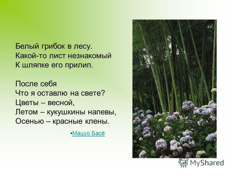 Белый грибок в лесу. Какой-то лист незнакомый К шляпке его прилип. После себя Что я оставлю на свете? Цветы – весной, Летом – кукушкины напевы, Осенью – красные клены. Мацуо Басё