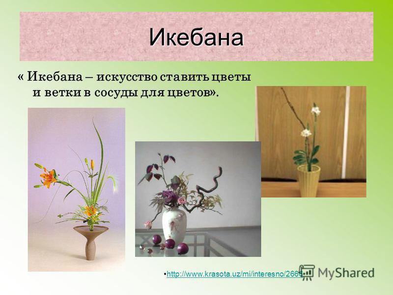 Икебана « Икебана – искусство ставить цветы и ветки в сосуды для цветов». http://www.krasota.uz/mi/interesno/2666