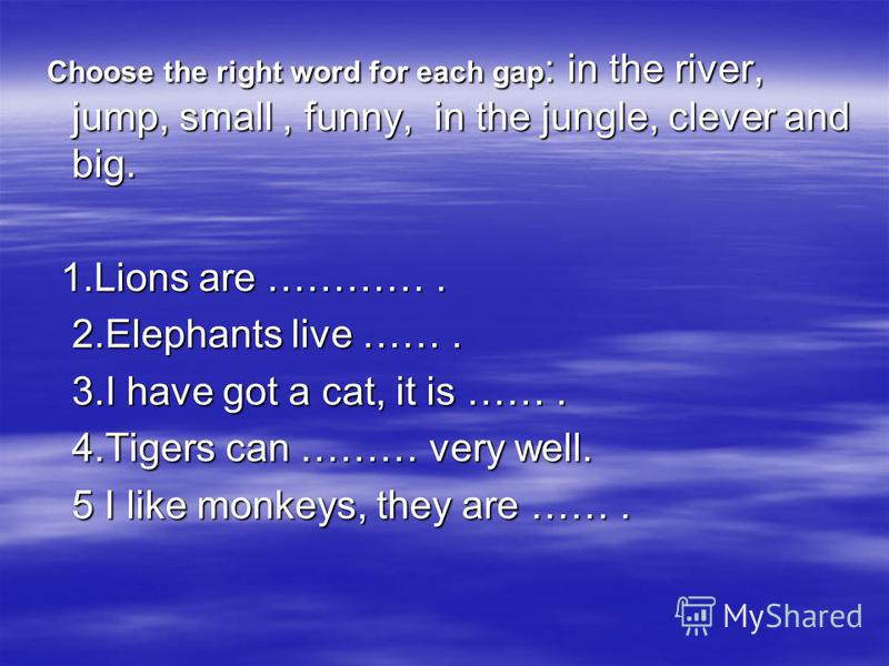 ElephantCatMonkeyDogFox Number21354 Points11111