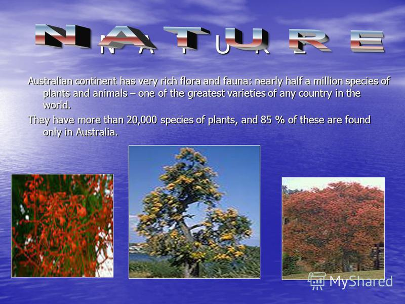 N A T U R E Australian continent has very rich flora and fauna: nearly half a million species of plants and animals – one of the greatest varieties of any country in the world. They have more than 20,000 species of plants, and 85 % of these are found