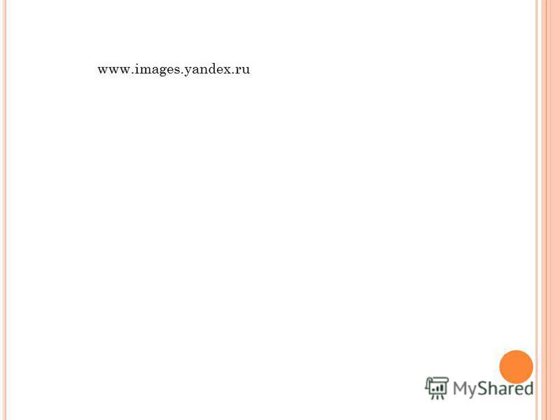 www.images.yandex.ru