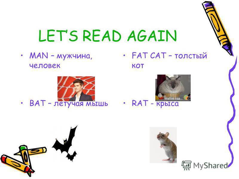 LETS READ AGAIN MAN – мужчина, человек FAT CAT – толстый кот BAT – летучая мышьRAT - крыса