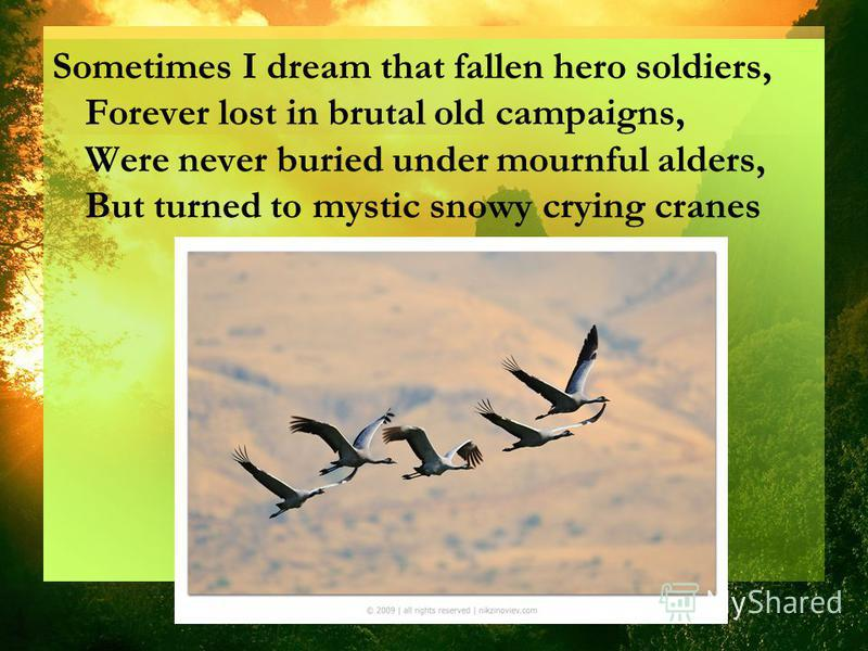 Sometimes I dream that fallen hero soldiers, Forever lost in brutal old campaigns, Were never buried under mournful alders, But turned to mystic snowy crying cranes