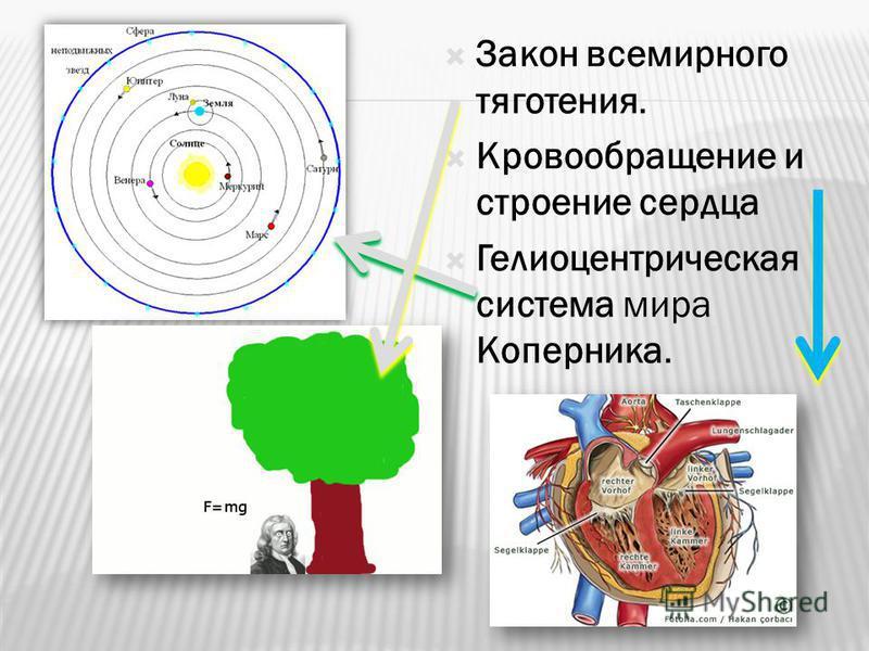 Закон всемирного тяготения. Кровообращение и строение сердца Гелиоцентрическая система мира Коперника.