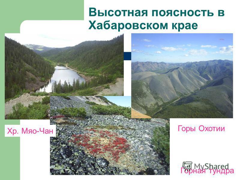 Высотная поясность в Хабаровском крае Горы Охотии Горная тундра Хр. Мяо-Чан