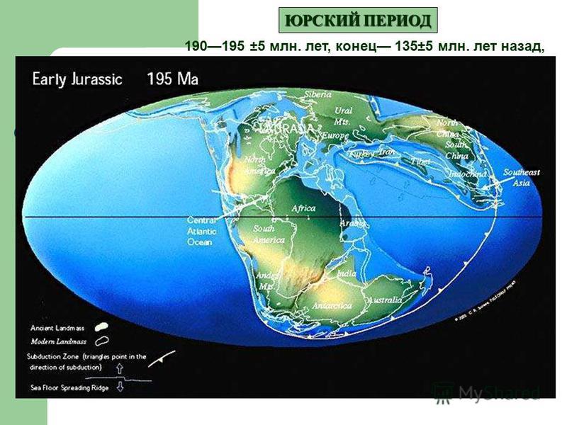 ЮРСКИЙ ПЕРИОД 190195 ±5 млн. лет, конец 135±5 млн. лет назад,