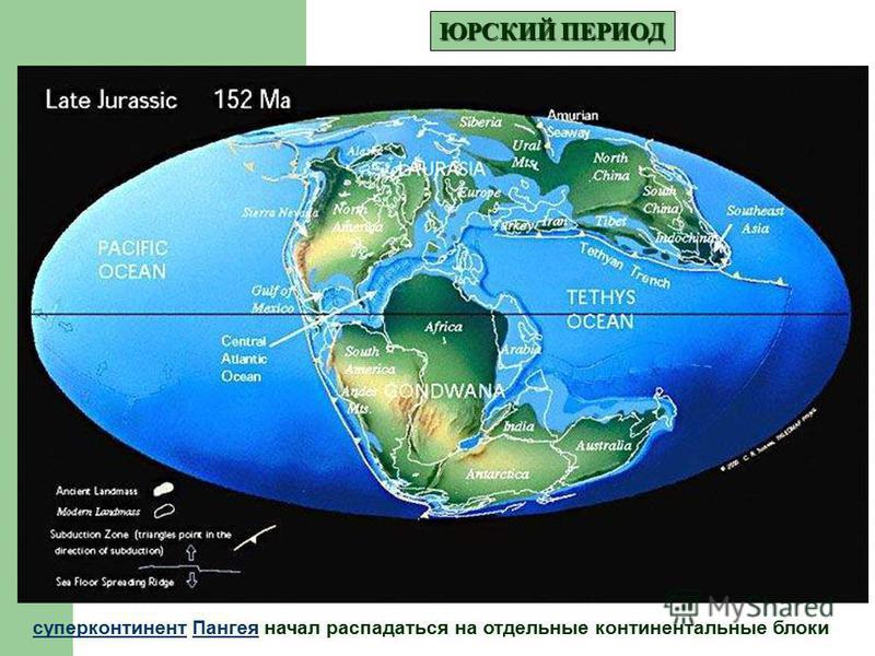 ЮРСКИЙ ПЕРИОД суперконтинент Пангея начал распадаться на отдельные континентальные блоки Пангея