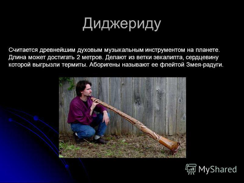 Диджериду Считается древнейшим духовым музыкальным инструментом на планете. Длина может достигать 2 метров. Делают из ветки эвкалипта, сердцевину которой выгрызли термиты. Аборигены называют ее флейтой Змея-радуги.