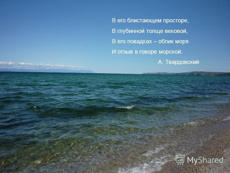 В его блистающем просторе, В глубинной толще вековой, В его повадках – облик моря И отзыв в говоре морской. А. Твардовский
