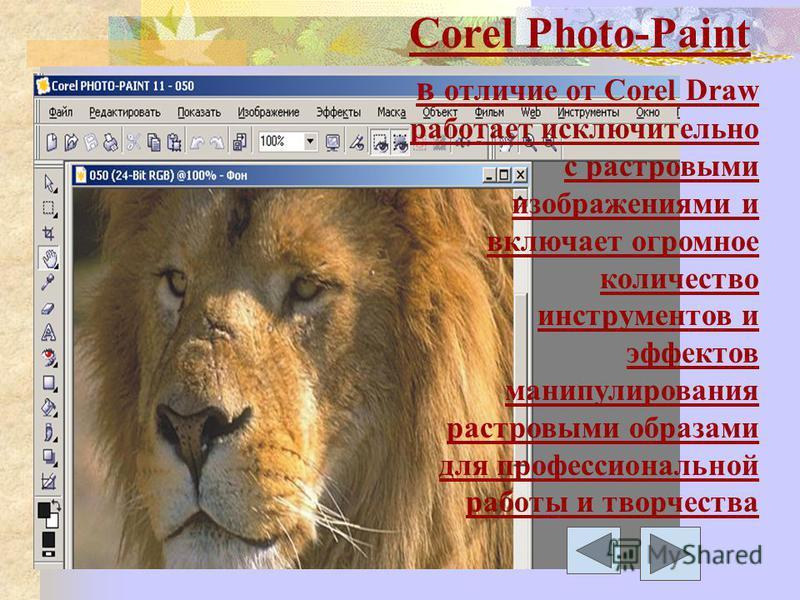 Corel Photo-Paint в отличие от Corel Draw работает исключительно с растровыми изображениями и включает огромное количество инструментов и эффектов манипулирования растровыми образами для профессиональной работы и творчества