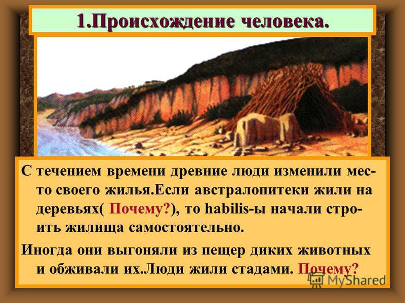 С течением времени древние люди изменили место своего жилья.Если австралопитеки жили на деревьях( Почему?), то habilis-ы начали строить жилища самостоятельно. Иногда они выгоняли из пещер диких животных и обживали их.Люди жили стадами. Почему? 1. Про