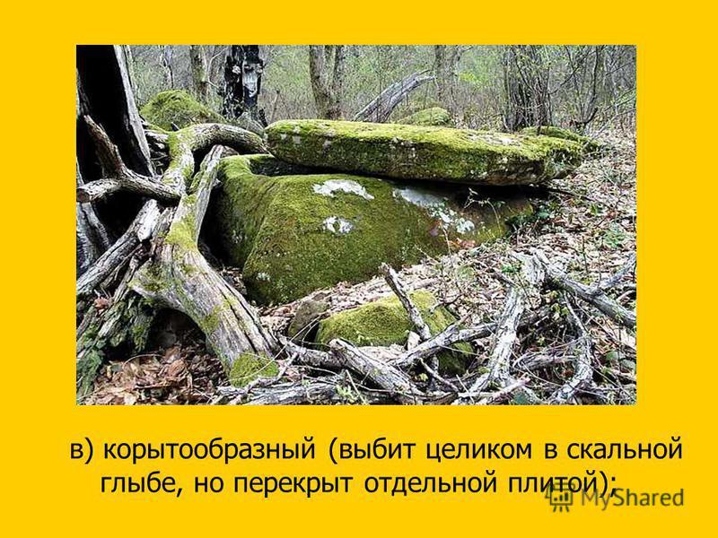 в) корытообразный (выбит целиком в скальной глыбе, но перекрыт отдельной плитой);
