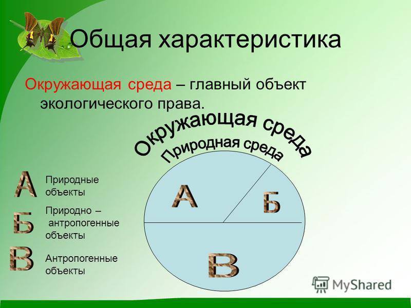Общая характеристика Окружающая среда – главный объект экологического права. Природно – антропогенные объекты Природные объекты Антропогенные объекты
