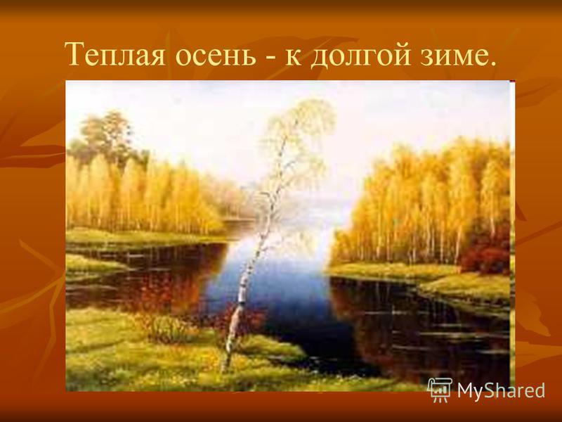 Теплая осень - к долгой зиме.