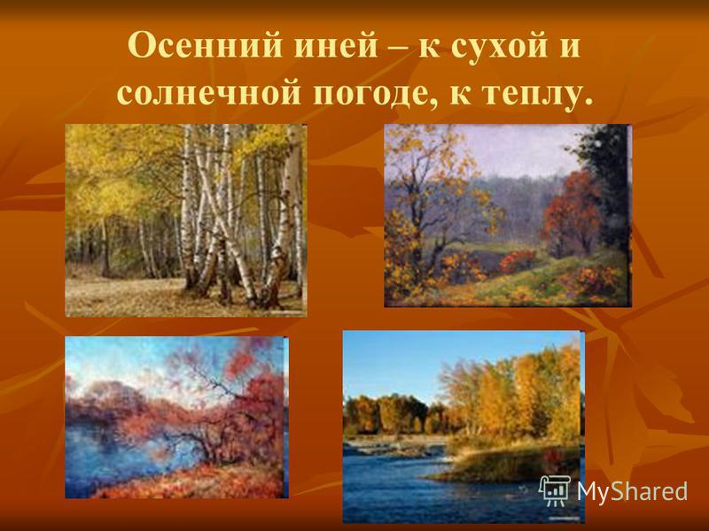 Осенний иней – к сухой и солнечной погоде, к теплу.