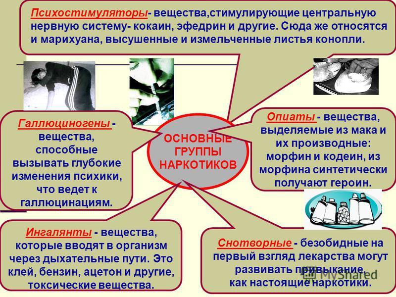 Психостимуляторы- вещества,стимулирующие центральную нервную систему- кокаин, эфедрин и другие. Сюда же относятся и марихуана, высушенные и измельченные листья конопли. ОСНОВНЫЕ ГРУППЫ НАРКОТИКОВ Опиаты - вещества, выделяемые из мака и их производные