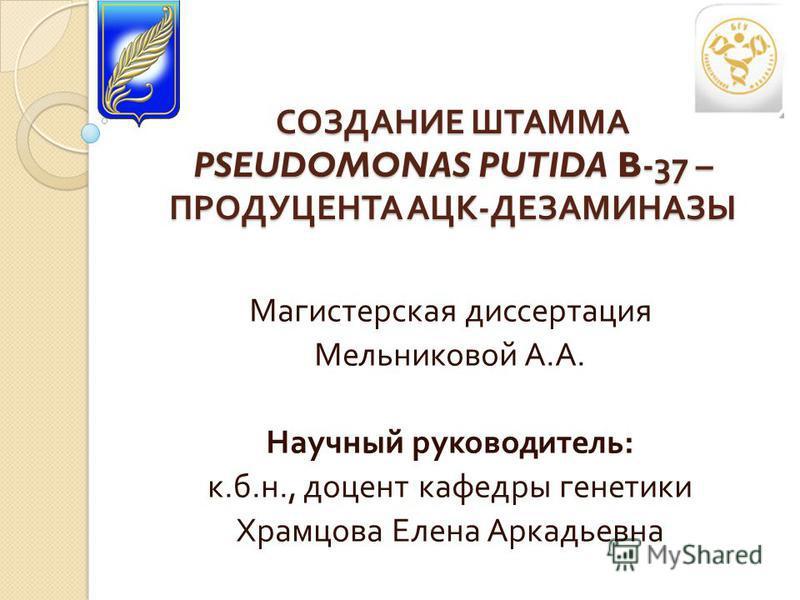 Презентация на тему СОЗДАНИЕ ШТАММА pseudomonas putida b  2