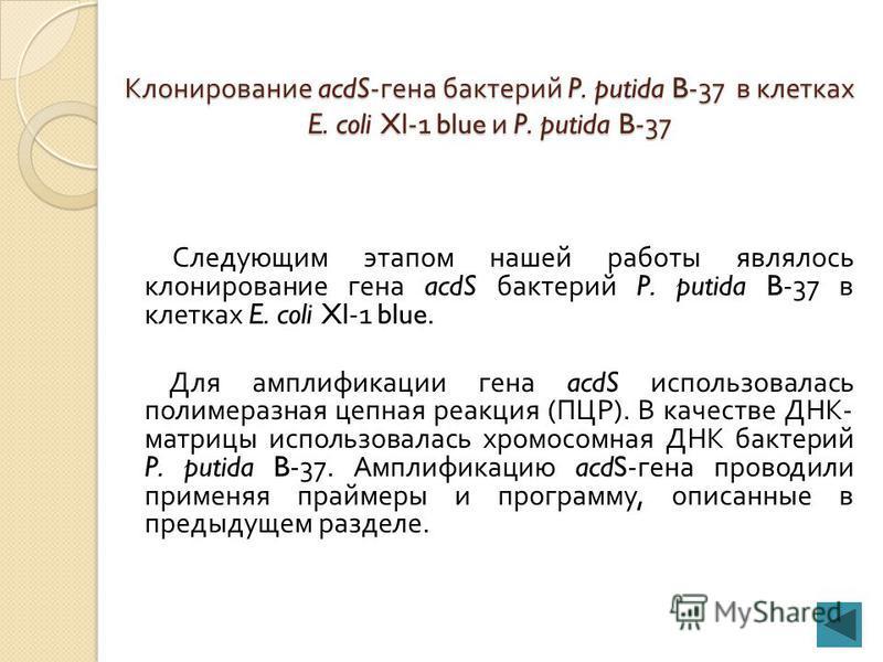1000 п.н. 12345 Рисунок 12 - Электрофоретический анализ продуктов ПЦР бактерий 1 - P. putida B-27, 2 - P. putida KT, 3 - P. putida B-37, 4 - P. putida М, 5 - P. putida B-28.