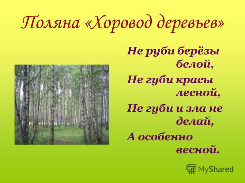 Загадка Весной одевается, а осенью раздевается. Лес!