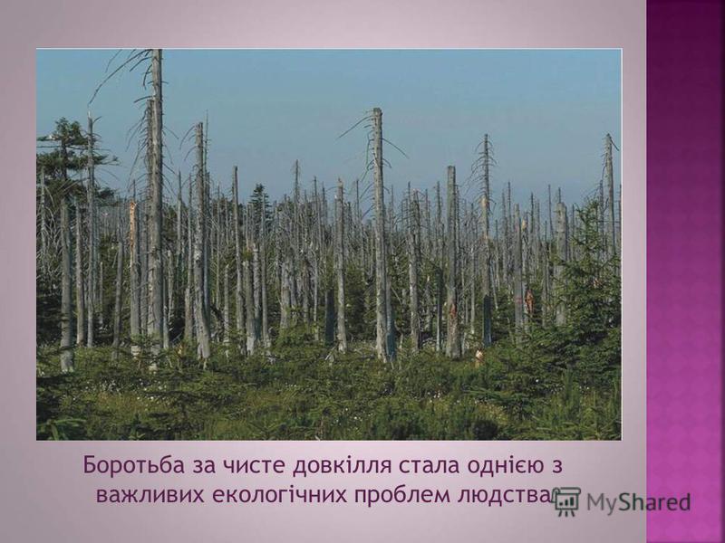 Боротьба за чисте довкілля стала однією з важливих екологічних проблем людства