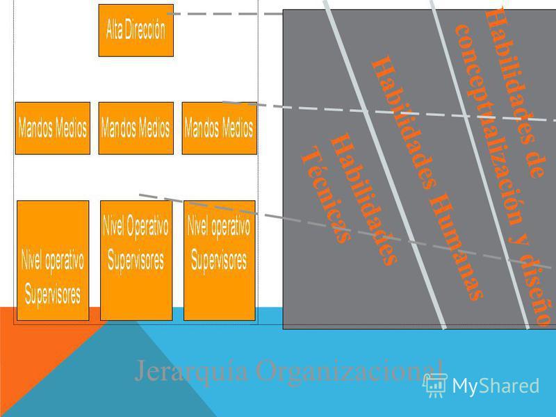 Habilidades Técnicas Habilidades Humanas Habilidades de conceptualización y diseño Jerarquía Organizacional