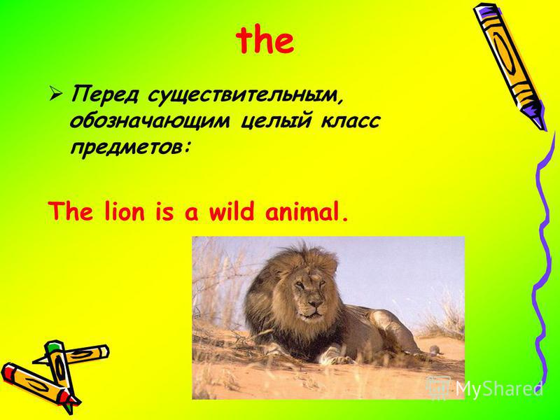 the Перед существительным, обозначающим целый класс предметов: The lion is a wild animal.