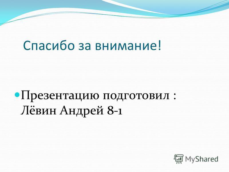 Спасибо за внимание! Презентацию подготовил : Лёвин Андрей 8-1