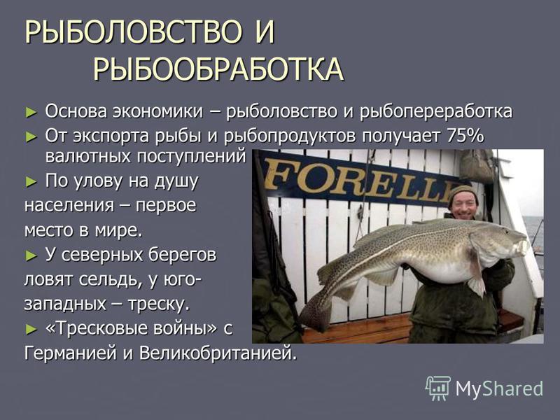 РЫБОЛОВСТВО И РЫБООБРАБОТКА Основа экономики – рыболовство и рыбопереработка Основа экономики – рыболовство и рыбопереработка От экспорта рыбы и рыбопродуктов получает 75% валютных поступлений От экспорта рыбы и рыбопродуктов получает 75% валютных по