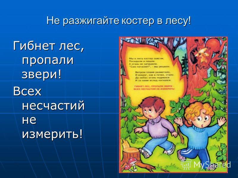 Не разжигайте костер в лесу! Гибнет лес, пропали звери! Всех несчастий не измерить!