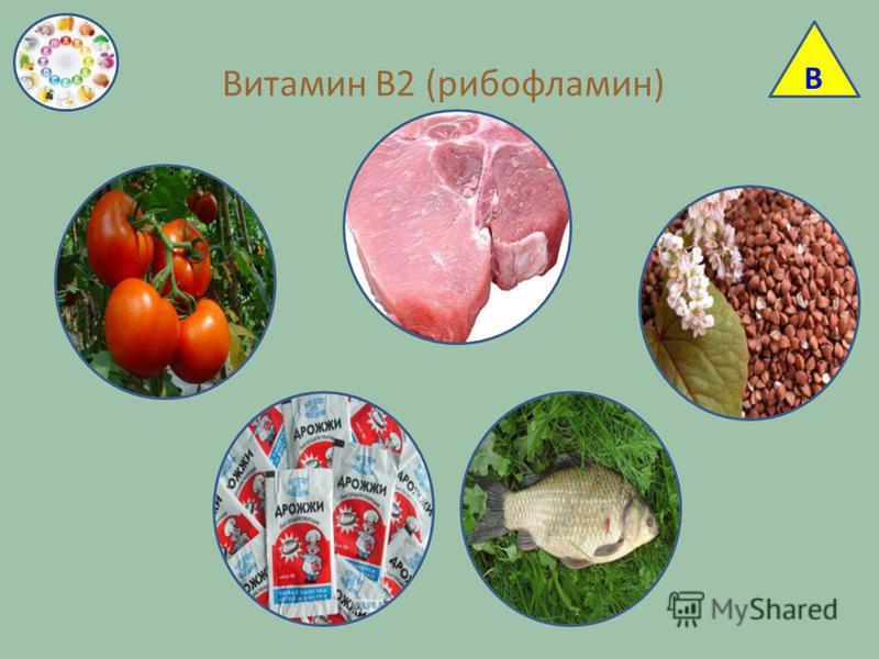 Витамин В2 (рибофлавин) В