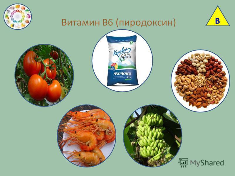 Витамин В6 (пиридоксин) В