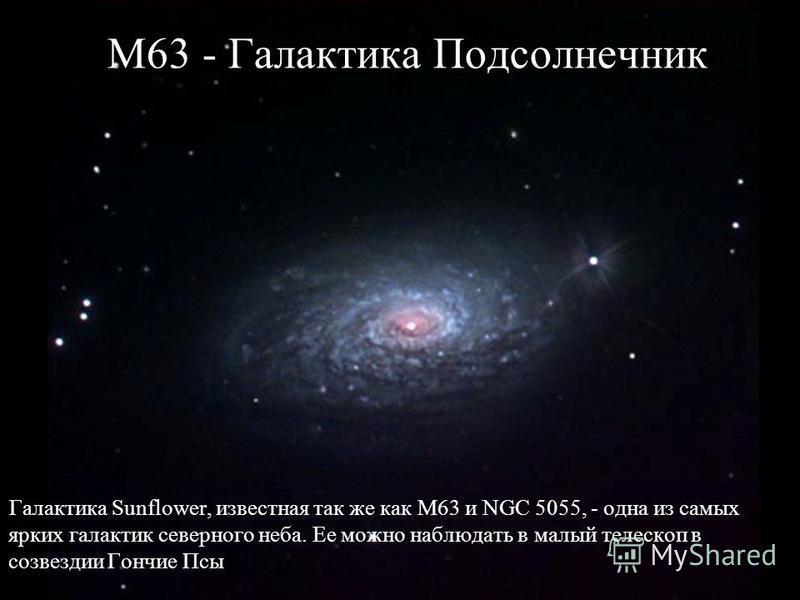 М63 - Галактика Подсолнечник Галактика Sunflower, известная так же как М63 и NGC 5055, - одна из самых ярких галактик северного неба. Ее можно наблюдать в малый телескоп в созвездии Гончие Псы