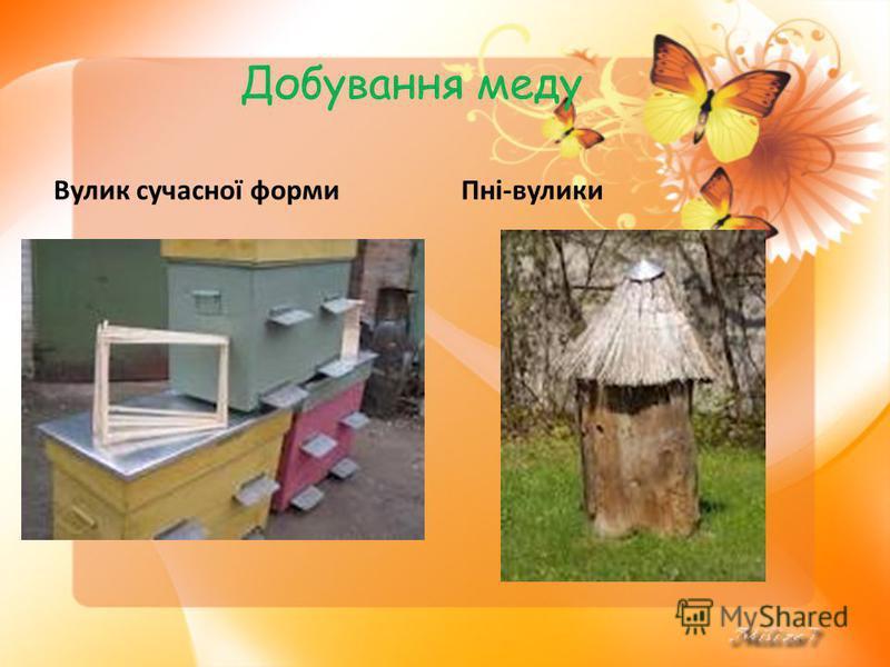 Добування меду Вулик сучасної формиПні-вулики