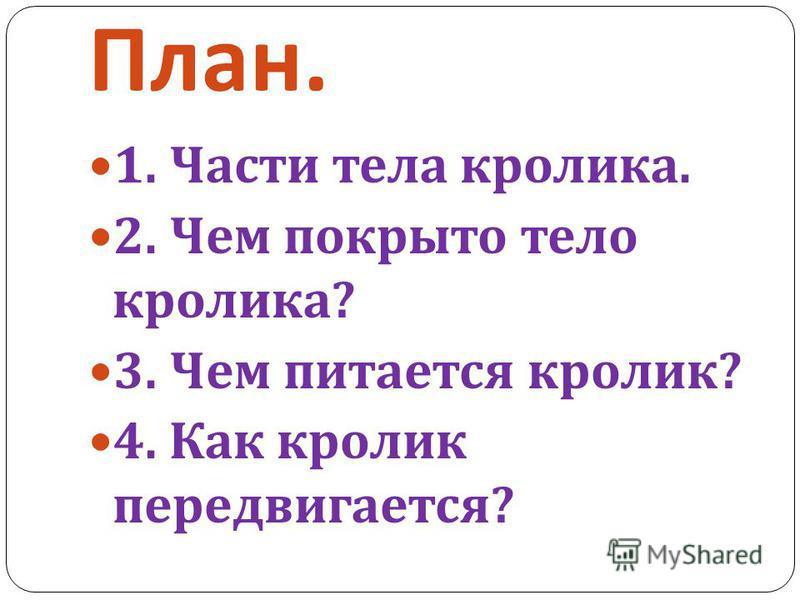 План. 1. Части тела кролика. 2. Чем покрыто тело кролика ? 3. Чем питается кролик ? 4. Как кролик передвигается ?
