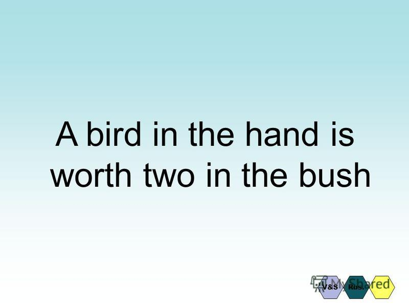 A bird in the hand is worth two in the bush Rus.V&S