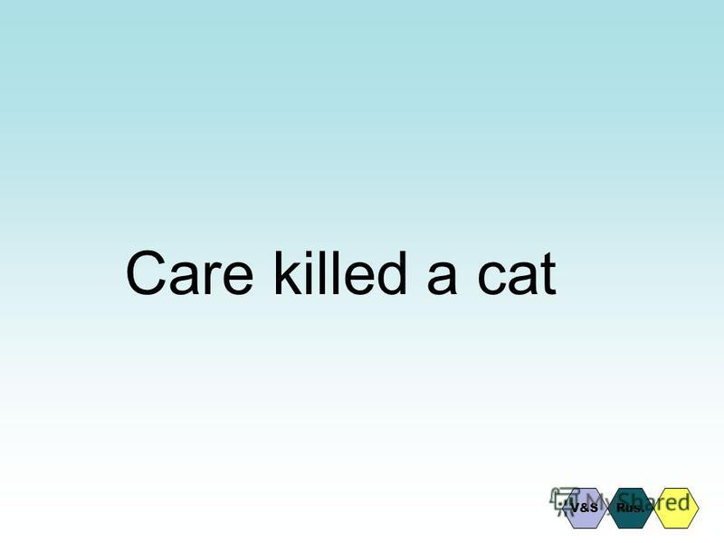Care killed a cat Rus.V&S