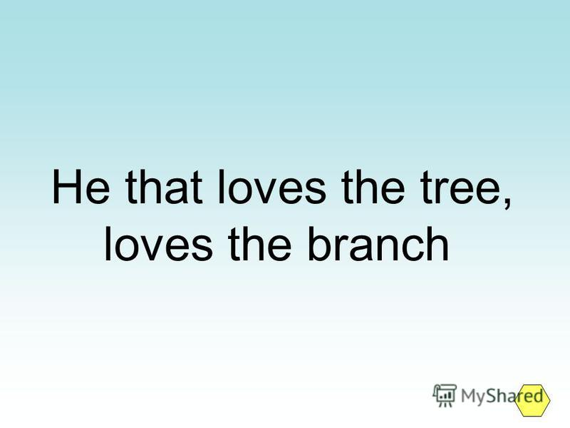 He that loves the tree, loves the branch