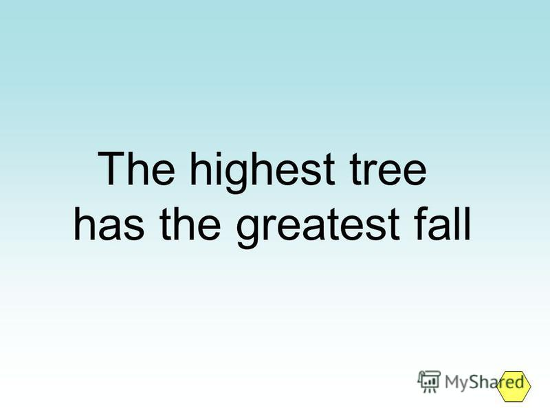 The highest tree has the greatest fall