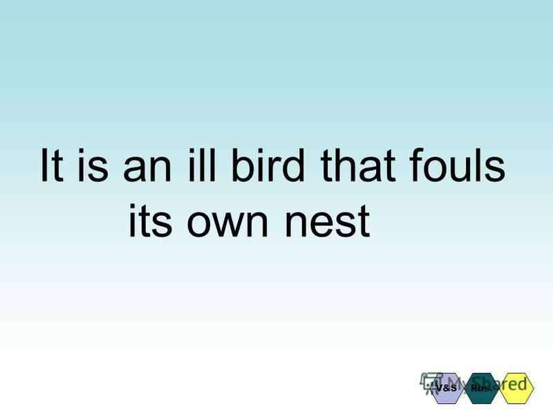 It is an ill bird that fouls its own nest Rus.V&S