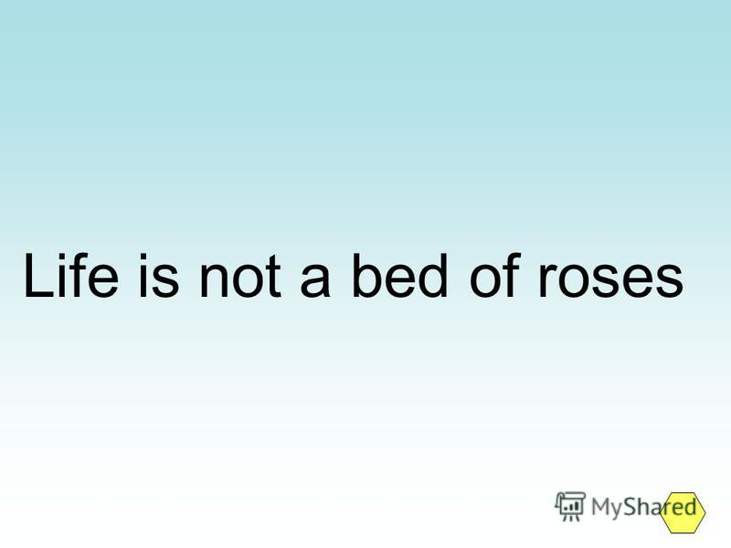 Life is not a bed of roses