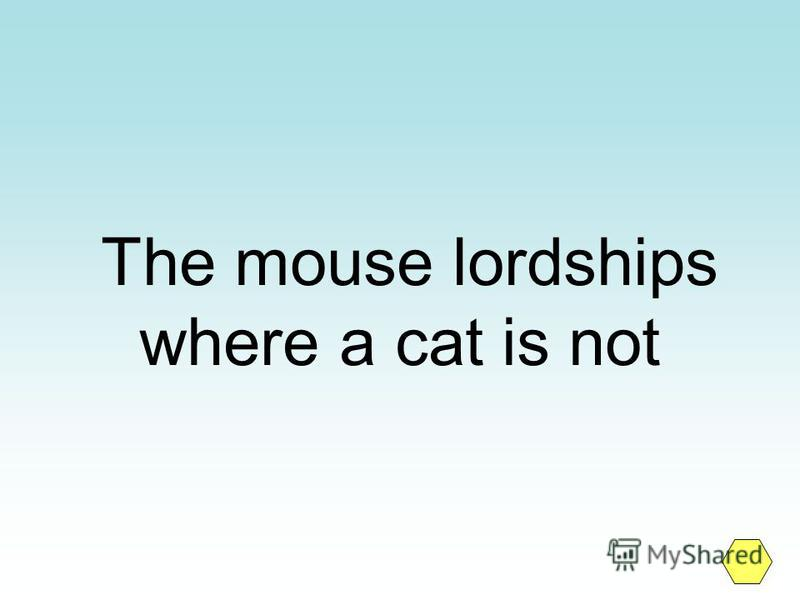 The mouse lordships where a cat is not