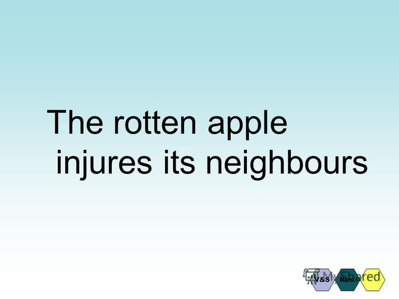 The rotten apple injures its neighbours Rus.V&S