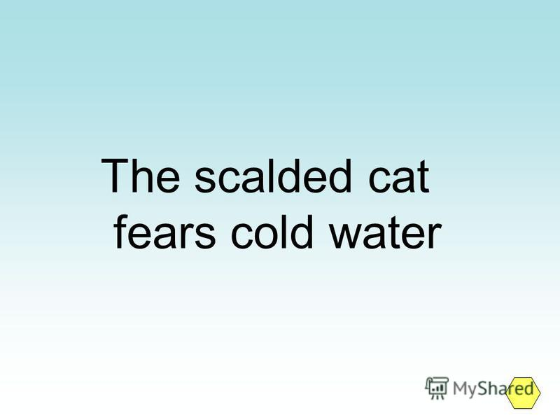 The scalded cat fears cold water